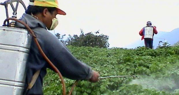 آشنایی با سموم شیمیایی و دوره کارنس و خروج سم و هشدار در باره مصرف گیاهان