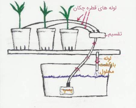 شمای-سیستم-آبیاری-قطره-ای-در-سیستم-هیدروپونیک