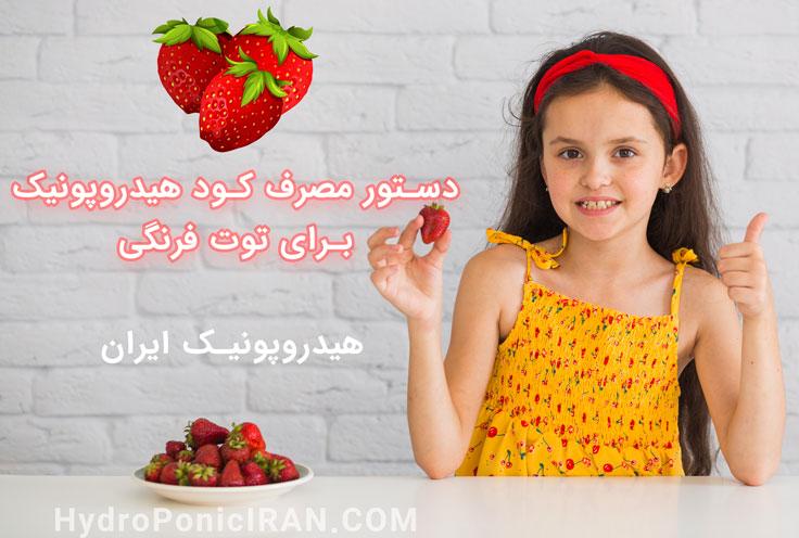 دستور مصرف کود هیدروپونیک ایران برای توت فرنگی