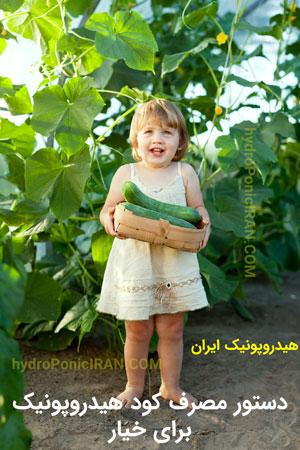 دستور مصرف کود هیدروپونیک ایران برای خیار - کود هیدروپونیک ایران