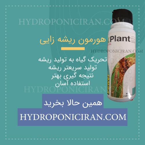 محصول-هورمون-ریشه-زایی-در-هیدروپونیک-ایران-تحریک-گیاه-تولید-ریشه