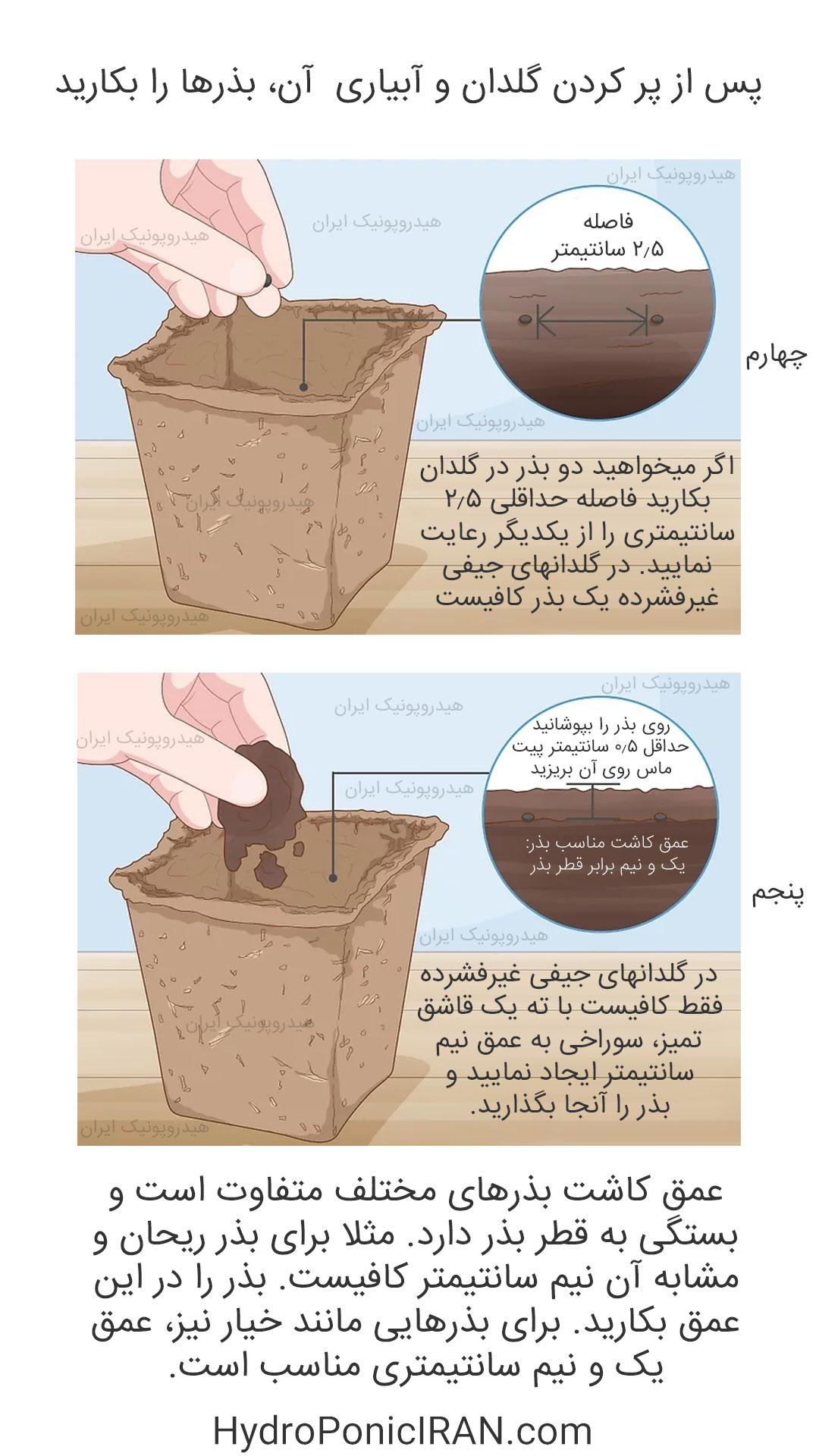 راهنمای-آموزش-کاشت-انواع-بذر-در-گلدان-یا-جیفی-غیرفشرده-هیدروپونیک-ایران.jpg-عمق-مناسب-بذرپ