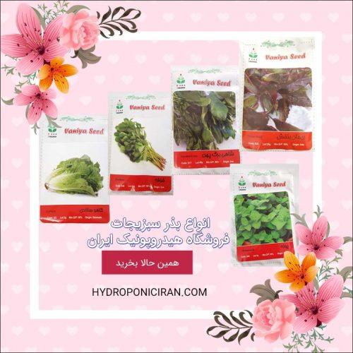 فروش انواع بذر سبزیجات در فروشگاه اینترنتی هیدروپونیک ایران