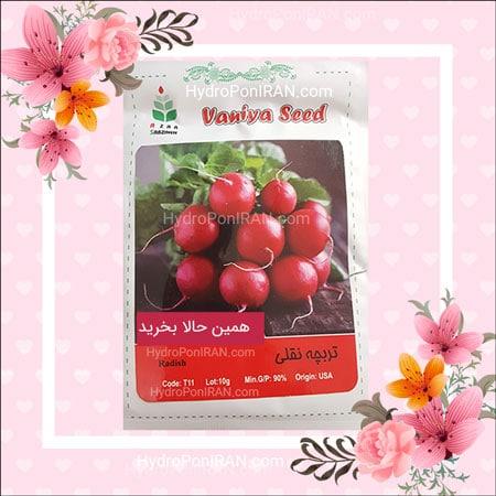 فروش بذر تربچه نقلی در فروشگاه هیدروپونیک ایران