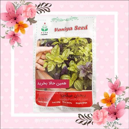 فروش بذر ریحان میکس سبز و بنفش در فروشگاه هیدروپونیک ایران