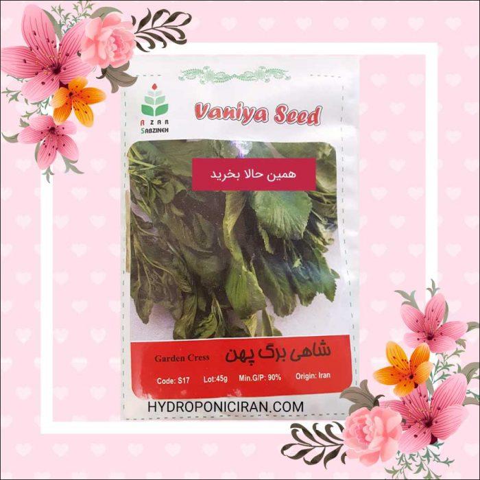 فروش بذر شاهی در فروشگاه هیدروپونیک ایران