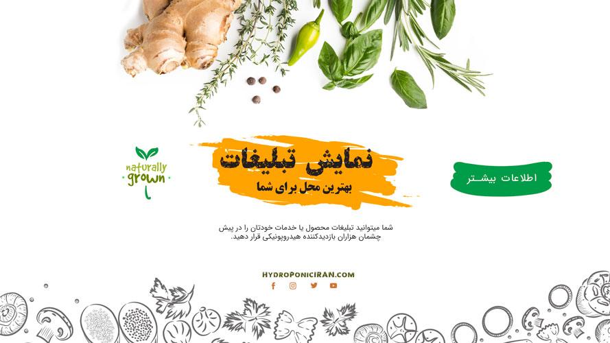 تبلیغات-در-هیدروپونیک-ایران-تبلیغات-سایت-پر-بازدید-اینترنتی