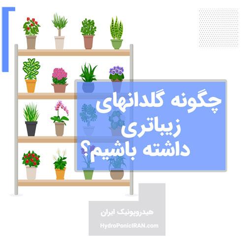 چگونه گیاه و گلدان زیباتری داشته باشیم؟ لذت ببریم! برای افزایش فروش! و حتی برای سلامتی گیاه!