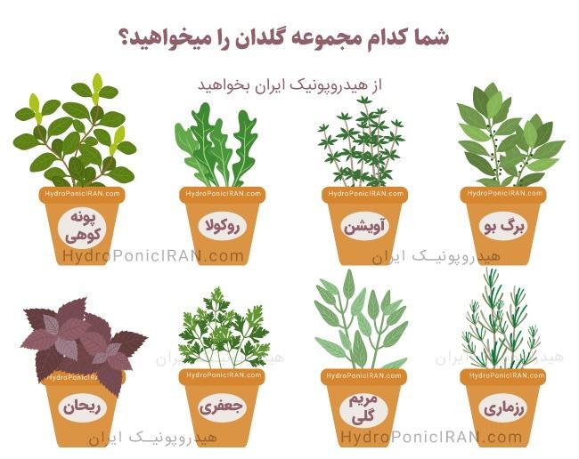 کدام-مجموعه-گلدان-گیاهان-دارویی-را-میخواهید
